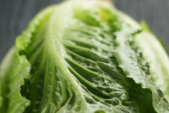 Fresh romain green salad on wood table Stock Photography