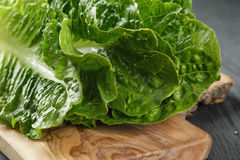 Fresh romain green salad on wood table Royalty Free Stock Photography