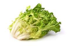 Free Fresh Romain Lettuce. Crispy Endive. Close-up, Isolated On White Background Stock Images - 147742774