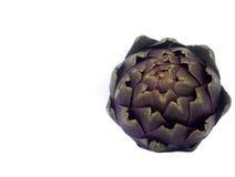 Fresh Romaneschi artichokes Royalty Free Stock Photos