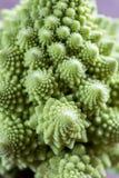 Fresh romanesco broccoli on the wooden board. Close up Royalty Free Stock Photos