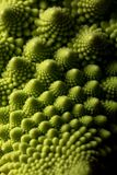 Fresh romanesco cabbage vegetable macro, selective focus stock image
