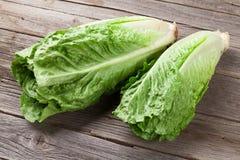 Fresh Romano salad Royalty Free Stock Images