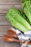 Fresh Romano salad Stock Photography