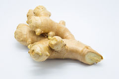 Fresh root ginger on wooden board. Fresh root ginger on white background, Isolated Stock Image
