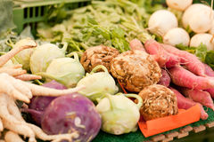Fresh root vegetable carrot potatoes onion beet on market Stock Images