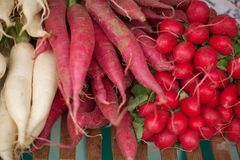 Fresh root vegetables at the weekly market. Can be used as background Stock Images