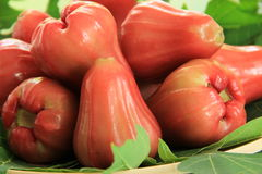 Fresh rose apple. S on green leaves Stock Photo