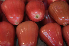 Fresh Rose apples  or chomphu fruit  is very much on the market background Royalty Free Stock Image