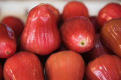 Fresh Rose apples  or chomphu fruit  is very much on the market background Royalty Free Stock Images
