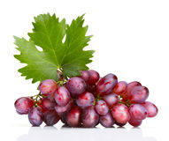 Fresh rose grapes with leaf Stock Image