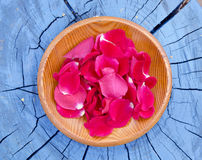 Fresh rose petal in wooden plate Stock Photos