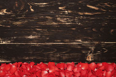 Fresh rose petals on wooden background Royalty Free Stock Image