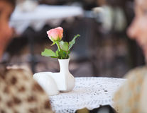 Fresh rose in white vase Royalty Free Stock Images