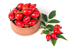 Fresh rosehip berries in a wooden bowl isolated on white background Stock Photography