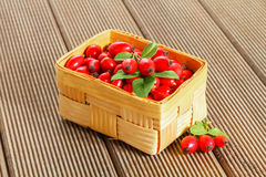 Fresh rosehip fruit and leaves Royalty Free Stock Photography