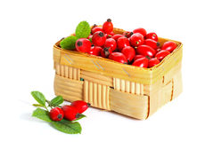 Fresh rosehip fruit and leaves in a basket Royalty Free Stock Images