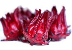 Fresh Rosella Fruit Royalty Free Stock Images