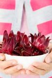 Fresh roselle flower Stock Image