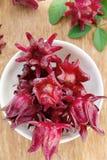 Fresh roselle flower Stock Photo