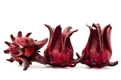 Fresh Roselle Royalty Free Stock Images