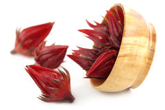Fresh Roselle Royalty Free Stock Photography