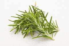 Fresh Rosemary. Sprigs on a kitchen counter Royalty Free Stock Photography