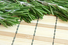 Fresh rosemary on a bamboo background Stock Photos
