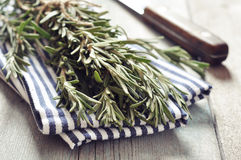 Fresh rosemary. Bunch of fresh rosemary with knife on wooden background Royalty Free Stock Photo