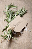 Fresh rosemary bunch Stock Images