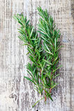 Fresh rosemary on cracked whited wooden background Royalty Free Stock Image