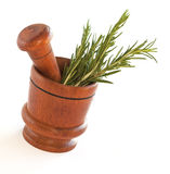 Fresh rosemary herb in wooden mortar with pestle Stock Image