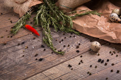 Fresh rosemary herbs. Red hot chili pepper. Egg with black pepper. Many spices on a rustic background. Mexican cuisine. Royalty Free Stock Images