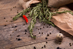 Fresh rosemary herbs. Red hot chili pepper. Egg with black pepper. Many spices on a rustic background. Mexican cuisine. Stock Photography