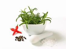 Fresh rosemary in a mortar Royalty Free Stock Image