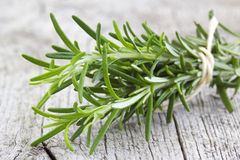 Fresh rosemary (Rosmarinus officinalis). Close up Stock Image