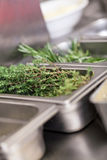 Fresh rosemary sprigs on a kitchen counter Stock Images