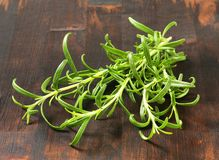 Fresh rosemary sprigs Royalty Free Stock Image