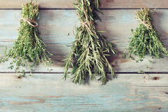 Fresh rosemary and thyme Royalty Free Stock Image