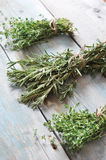 Fresh rosemary and thyme Royalty Free Stock Photography