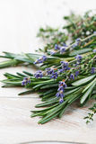 Fresh rosemary, thyme and dried lavender Royalty Free Stock Image
