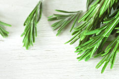 Fresh rosemary twigs on wooden background Stock Images