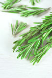 Fresh rosemary twigs on wooden background Stock Photography