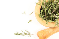 Fresh rosemary in  wooden mortar with pestle on withe background. Stock Photography