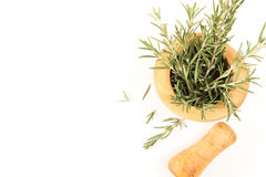 Fresh rosemary in  wooden mortar with pestle on withe background. Stock Image