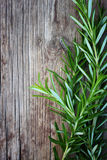 Fresh rosemary on wooden table royalty free stock photography