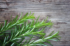 Fresh rosemary on wooden table Royalty Free Stock Image