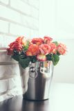 Fresh roses Stock Images