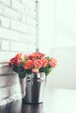 Fresh roses Royalty Free Stock Photography
