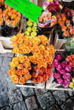 Fresh roses at the farners market Stock Photography